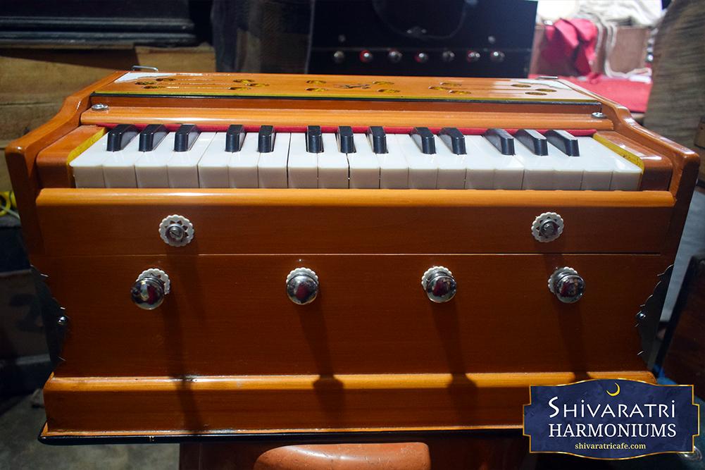 Shivaratri Harmoniums India by Amit Dhiman 4
